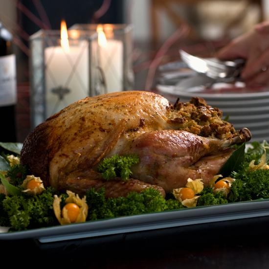 thanksgiving_550x550